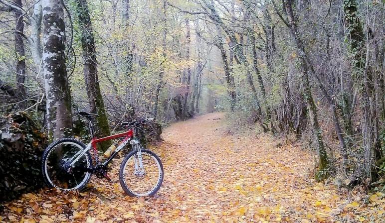 adelantamiento ciclistas peq